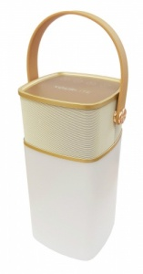 Yourlite Portable Bluetooth Lantern Speaker with Light & Mobile Powerbank - Gold